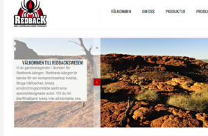 En ny hemsida